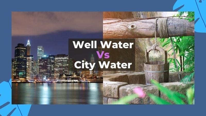 Water vs City Water